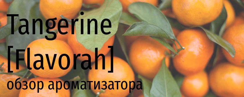 FLV Tangerine