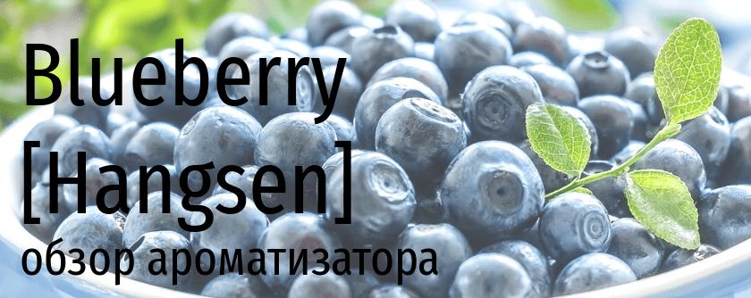 HS Blueberry