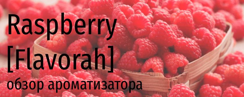 FLV Raspberry flavorah