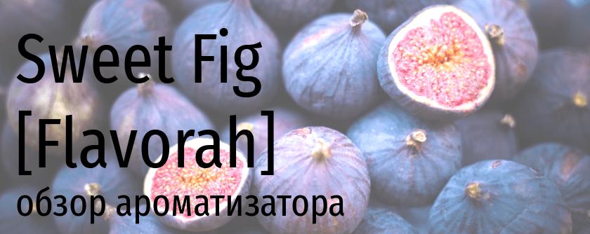 FLV Sweet Fig flavorah