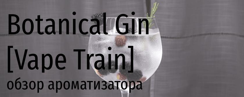 VT Botanical Gin vape train