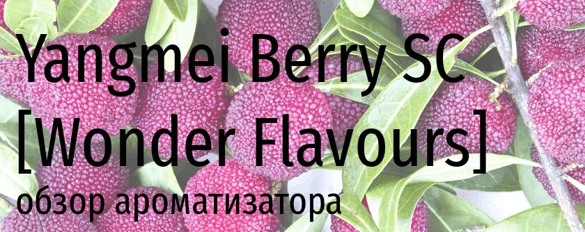 WF Yangmei Berry SC wonder flavours