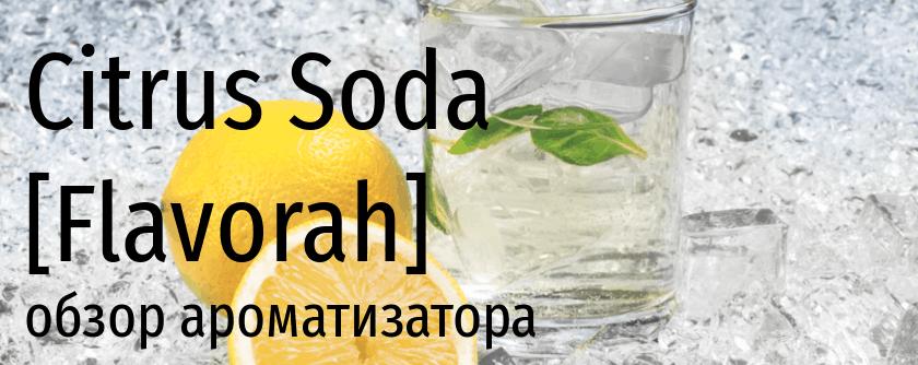 FLV Citrus Soda flavorah