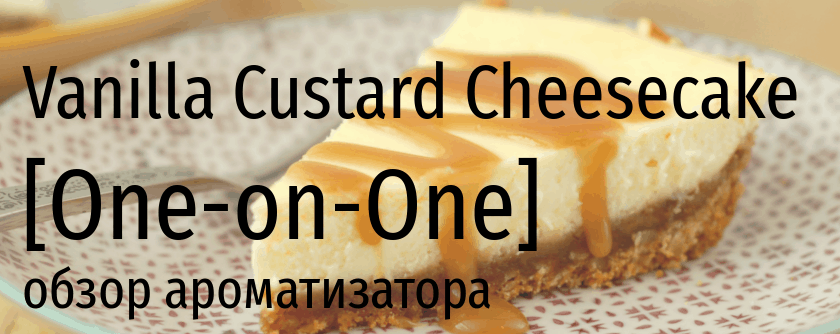 OOO Vanilla Custard Cheesecake one-on-one