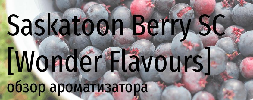 WF Saskatoon Berry SC wonder flavours