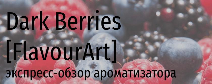 FA Dark Berries flavourart